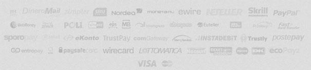 PlayMillion Zahlungsmoeglichkeiten